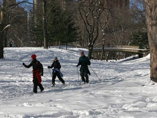 Cross-country skiing in Central Park