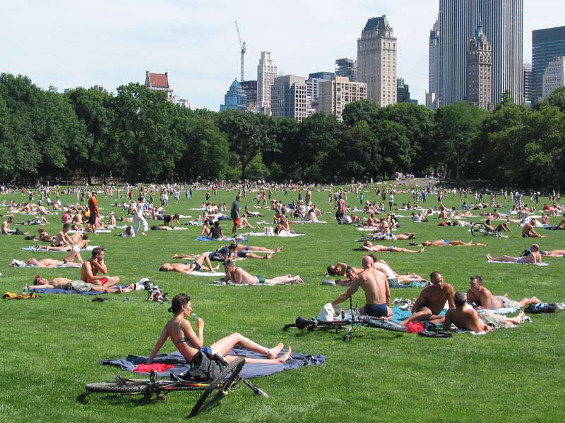http://wirednewyork.com/parks/central_park/images/cp_lawn_19july03.jpg